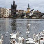 Прага – город магической красоты. Приворожила навсегда
