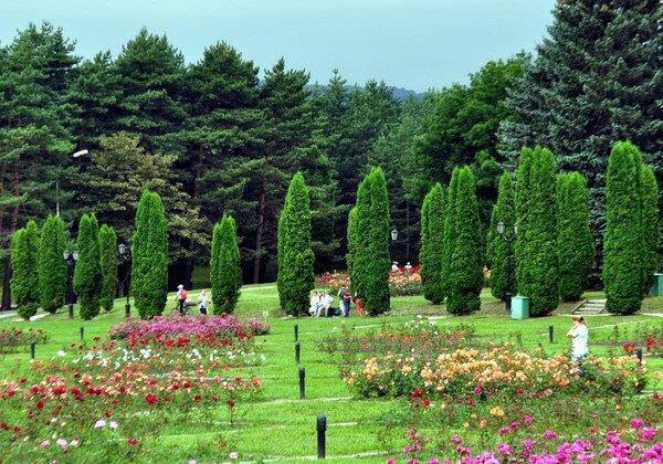 город Кисловодск. Долина роз в курортном парке