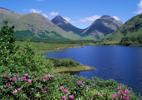Страна шотландия