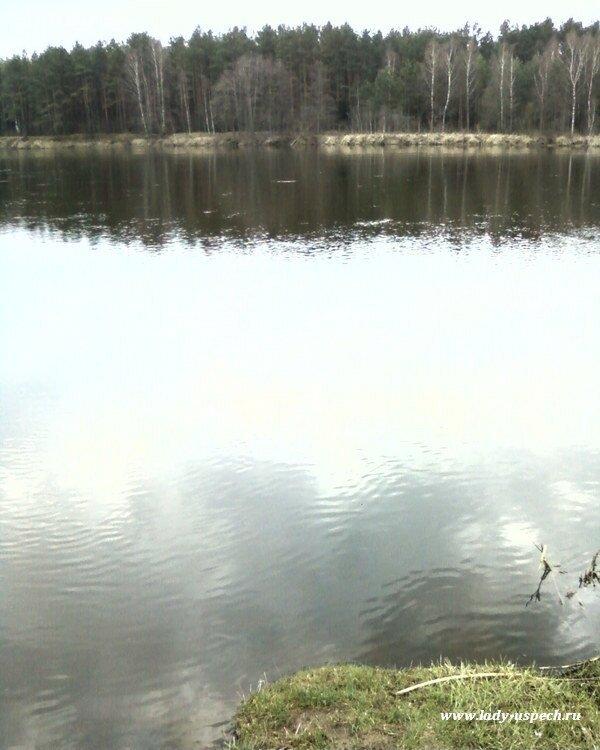 Весенняя природа Беларуси. Неман в апреле