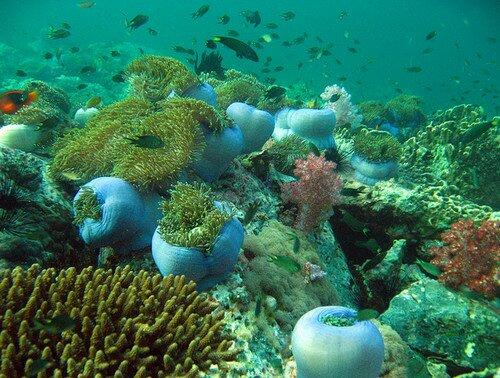 Морской парк Тарутао