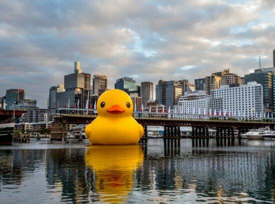 Огромный желтый утенок Rubber-Duck Флорентина Хофмана